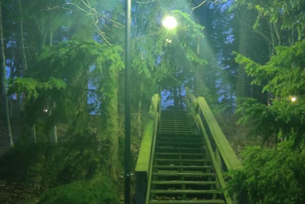 Sammaloitunut portaikko himmeässä vihertävässä iltavalaistuksessa Lapinjärven siviilipalveluskeskuksen lähistöllä.